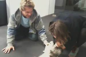 Lincoln Lewis and Caitlin Stasey with Bella