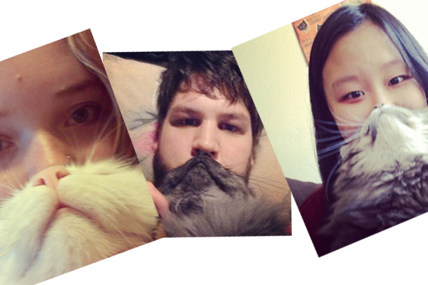 Show us your Cat Beard!