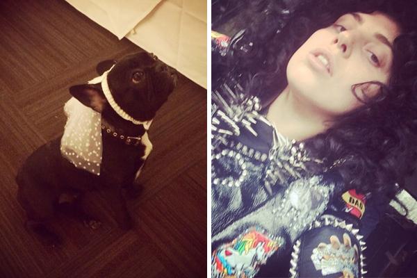 Images: Lady Gaga's Instagram