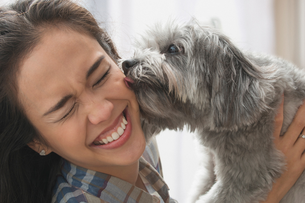 REVEALED: It's actually safer to kiss your dog than your partner!